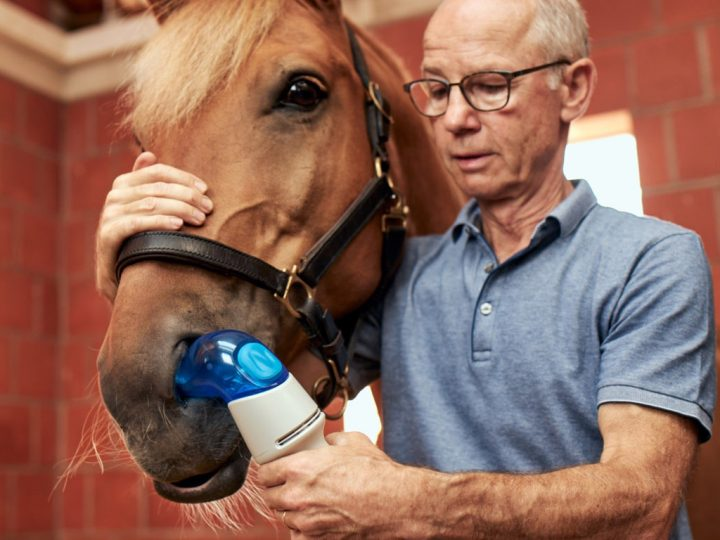 BI EquiHaler opens a new front on equine asthma