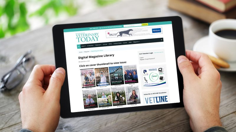 Digital Magazine Library