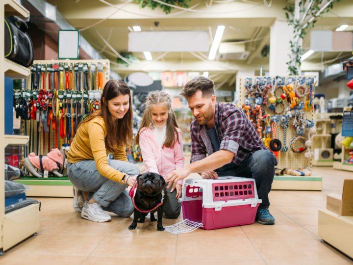 Researchers probe lockdown surge in puppy sales